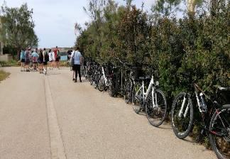 alquiler de bicicletas mallorca-excursion guada cala morlanda y punta de n'amer (4)