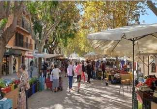alquiler de bicicletas mallorca-excursión guiada mercado de alcudia costa des barqueres, mercado (1)