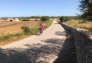 alquiler de bicicletas mallorca-excursión guiada vía verde, son carrió y punta de n'amer-con paisajes