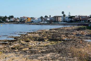 alquiler de bicicletas mallorca-playa es barquerès