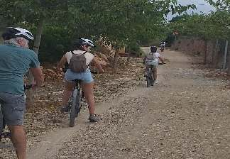alquiler de bicicletas mallorca- ruta en bicicleta por vía verde familiar